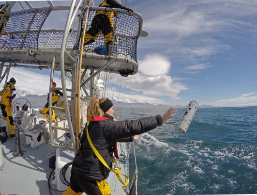 Deploying sonobuoys to listen for whales. Images: Kirstin Jones